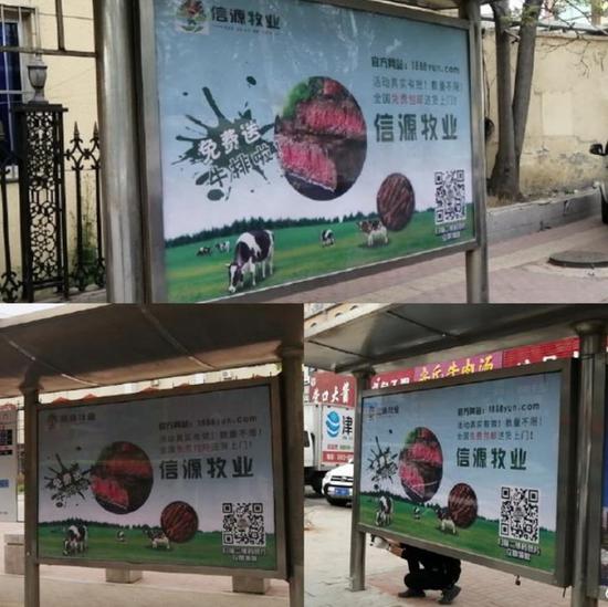 """▲所谓""""云养牛""""的广告出现在了公交站牌上。"""
