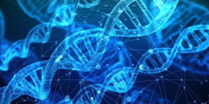 DNA-2.jpg