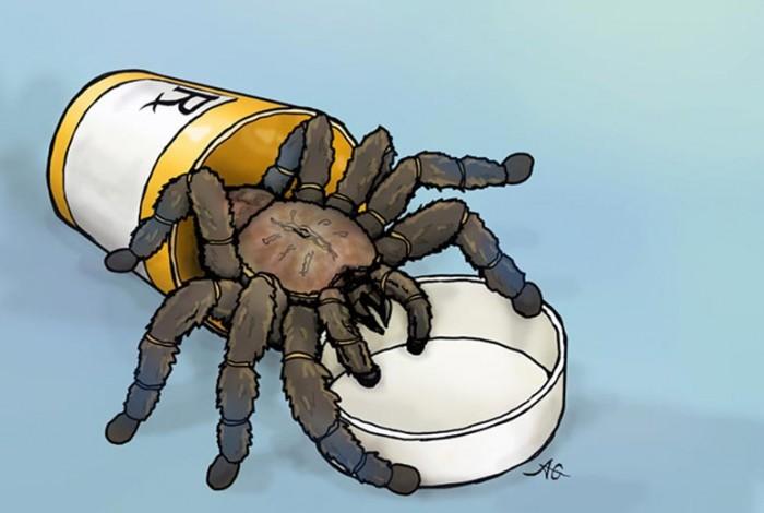 Trantula-Venom-Pain-Medication.jpg