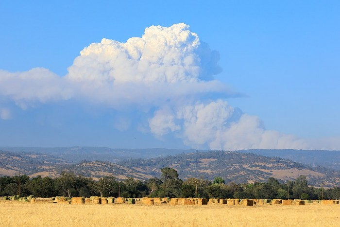 1024px-Pyrocumulus_cloud_produced_by_the_Dixie_Fire_on_July_22-5865.jpg